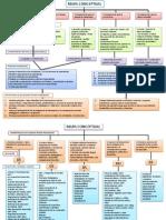 Mapa Conceptual Plan 2011