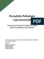 Portofoliu_Psihologie_experimentala