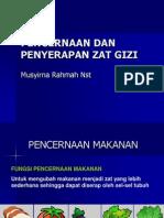 Pencernaan Zat Gizi3