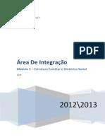 area-de-integrac3a7c3a3o-2.docx