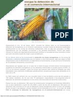 Servindi » A la FAO le preocupa la detección de transgénicos en el comercio inte