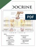 Endocrinology 1aim.net