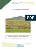 MARM INFORME_FINAL_FRUTOSCASCARA 2011.pdf