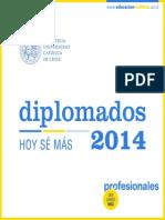 Diplomados 2014.UC