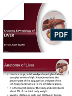 Anatomy & Physiology of Liver by Anjali