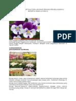 Tanaman Hias Hortikultura Lengkap Dengan Penjelasannya