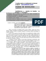 Guia de Estudos de Sociologia - Resumos II.doc