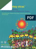 Baronnet, Bruno y Otros. Luchas Muy Otras. 2011, EZLN