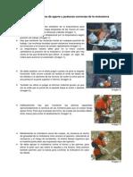Recomendaciones de Agarre y Posturas Correctas de La Motosierra