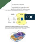 Citosol, subst e mistura, ligações