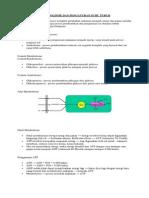 Fisiologi Metabolisme Dan Pengaturan Suhu Tubuh