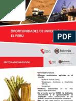 presentacinpas-proinversinsetiembre2010-100928124428-phpapp02