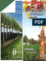 lambayequeexporta-revista3-110805194034-phpapp02