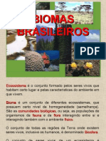 6 Anos Biomas Brasileiros
