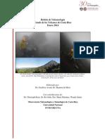 Estado de los Volcanes. Enero 2014