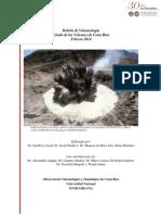 Estado de los Volcanes. Febrero 2014.