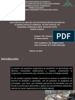 Presentación Francys Quintero