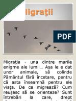 Migraţii
