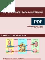 tema4-aparatos-para-la-nutricic3b3n-circulatorio(1).pdf