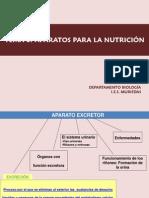 tema4-aparatos-y-c3b3rganos-de-excrecic3b3n.pdf