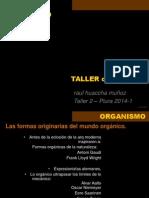 HUACCHA Formas XX Organismo 2014 1