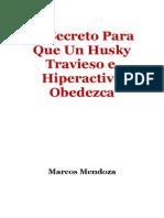 Husky Travieso e Hiperactivo