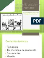 perspectivas_teoricas_se.pdf
