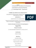 FaseInvestigacionEquipoCapaciTICs VERSION 1.0