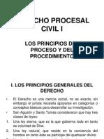 DPC I - Principios Del Proceso y Del Procedimiento