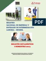 Boletin Estadistico Reneeil i Semestre 2013