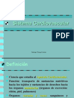 07. Sistema Cardiovascular
