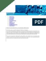 Fases de pedaleo ciclismo.docx