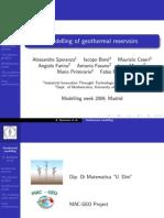 Geothermal Reservoir Modelling