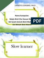 slowlearner-120731205615-phpapp01