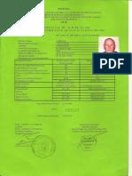 Autorizatie Sudor Gorovei PE