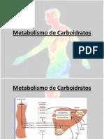 10 Metabolismo+de+Carboidratos[1]