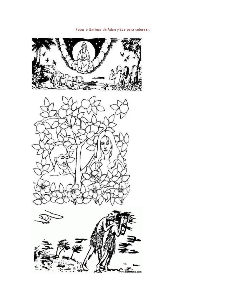 Atractivo Arturo Para Colorear Páginas Pbs Adorno - Dibujos de ...