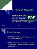 Il Regno Animale_gli Invertebrati