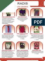 Radis Catalogue