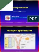 2. Fisiologi kehamilan_WDD