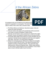 Niche of the African Zebra