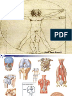 Osteoartrología Generalidades