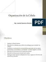 Celula Ppt Universidad