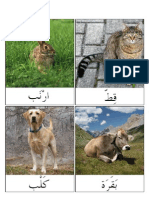 Arabic Animal Cards