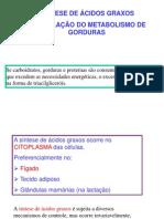 Bios Acidos Graxos Marisa2006 Resumida