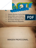 imagenprofesional-091108202819-phpapp01