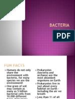 1 a bacteria pp