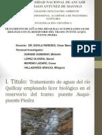 Tratamiento de Aguas del río Quillay con licor biologico