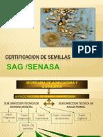Certificacion de Semillas