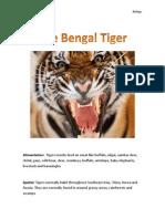Biology Tiger Hw